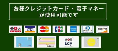 各種クレジットカードと電子マネーが使用可能です